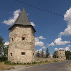 Замок Контських (дві башти) (с.Кривче, Тернопільська обл.)