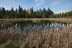 Озеро на окраине Делятина