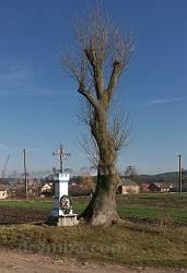 Старий придорожній хрест на околиці Єлихович