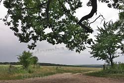 Вид на юго-восток. Вдали - уже противоположный берег Днестра