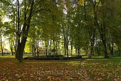 Село Соколовка. Парк