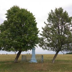 Хрест у полі та два похилених дерева (с.Литячі, Тернопільська обл.)